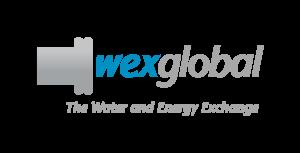 WEX Global 2020